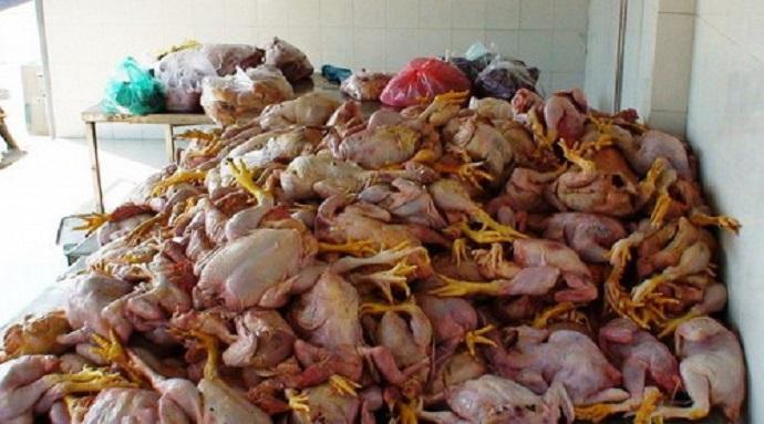 soudi-chicken