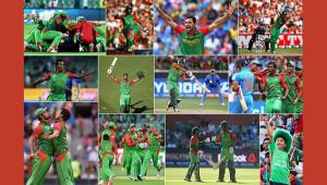cricket-2015