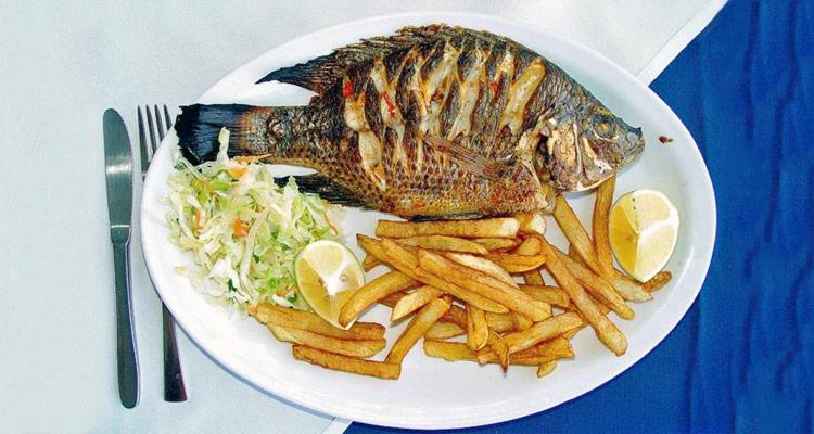telapia-fish