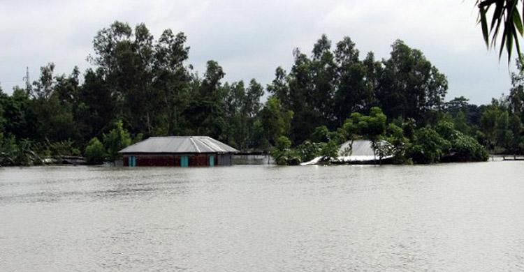Thakurgaon-Flood