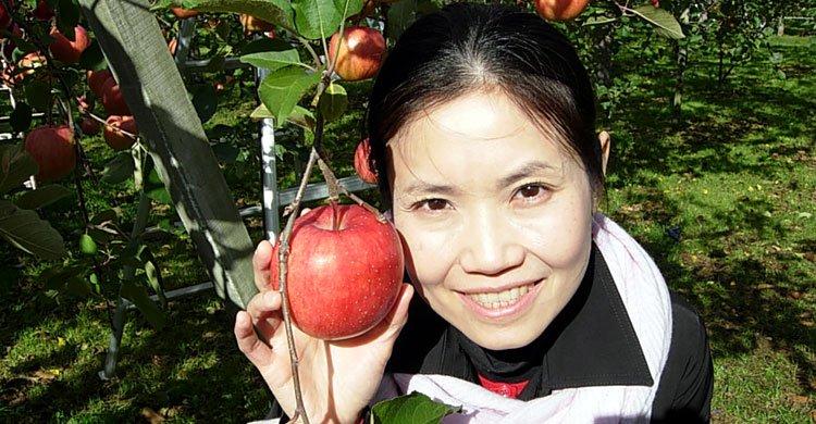 japan-apple