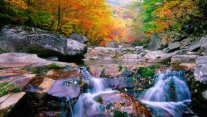 autumn Jirisan Mountain