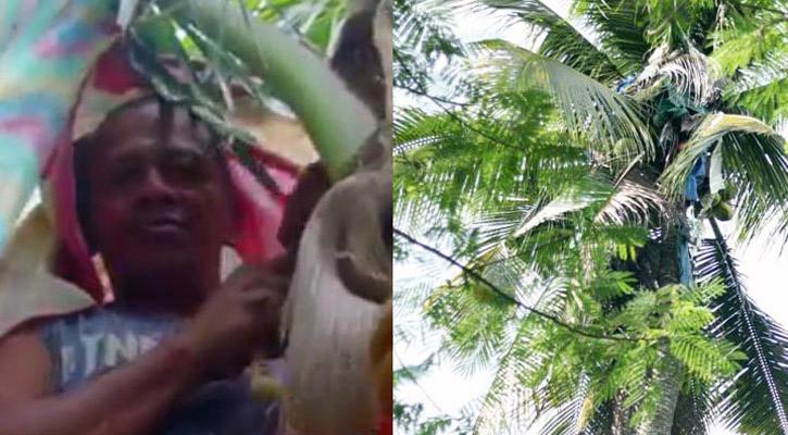 man-on-coconut