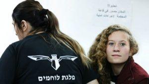 palestinian-tamimi