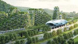 tree-city
