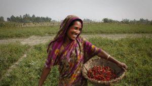 bangladesh-farmar