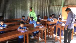 primari-teacher