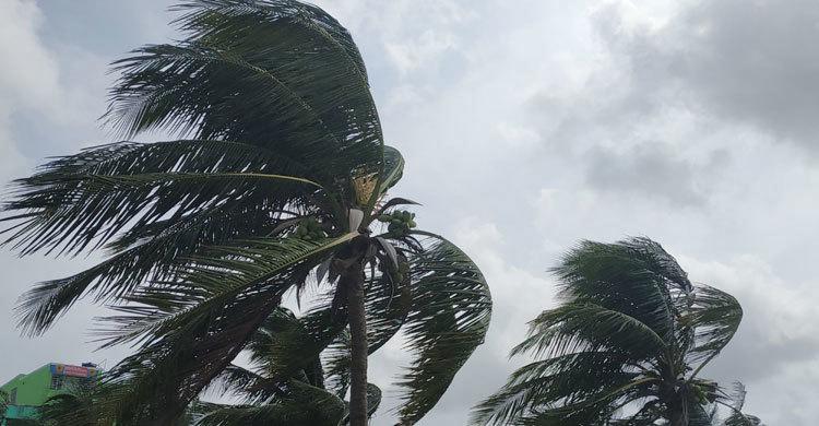 fani-strom