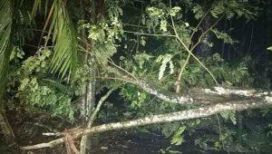 bhola-cyclone