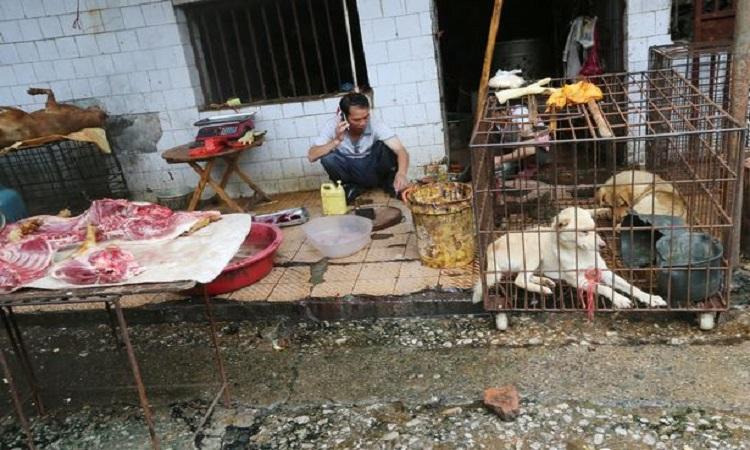china-bazar